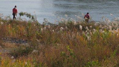 多摩川・鮎釣りか