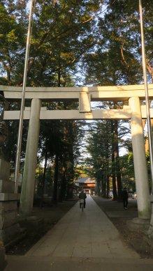 諏訪神社・鳥居