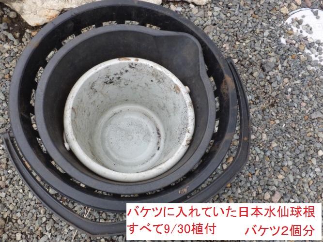 DSCF3069_1.jpg