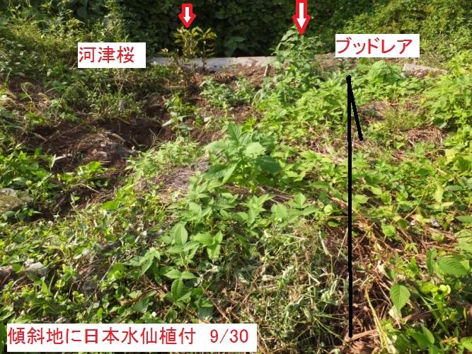 DSCF3077_1.jpg