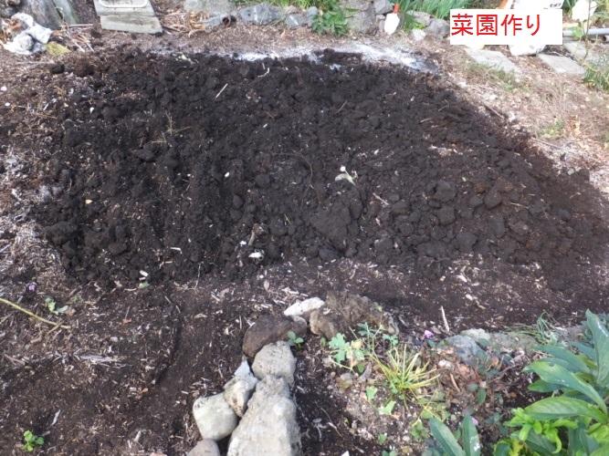DSCF4615_1.jpg