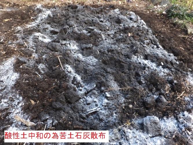 DSCF4618_1.jpg
