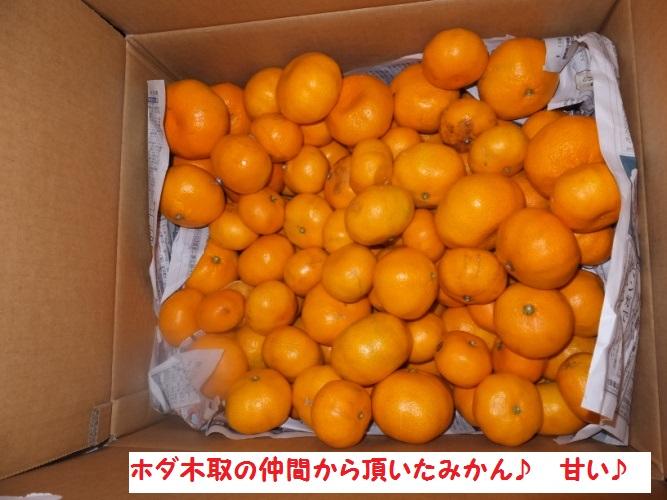 DSCF5258_1.jpg