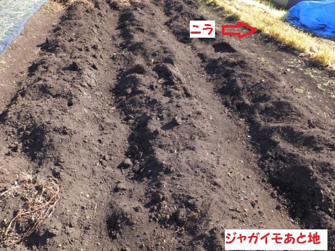 DSCF5692_1.jpg