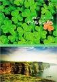 絶景とファンタジーの島 アイルランドへ