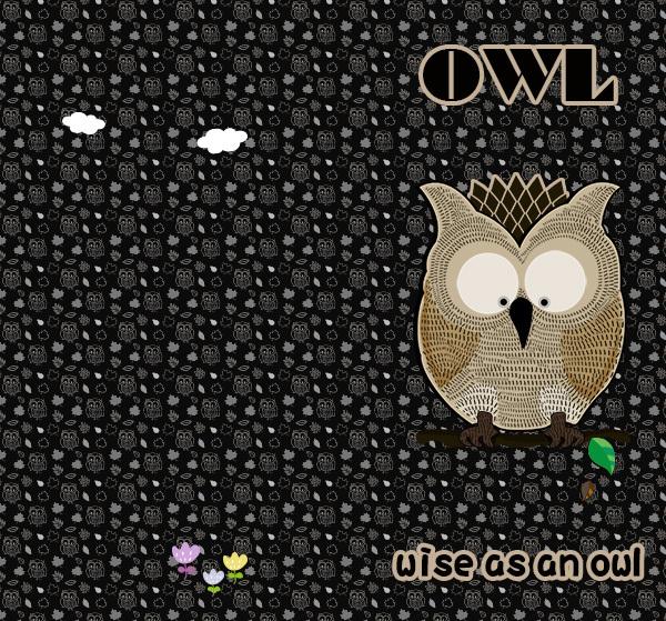 OWLパターン600