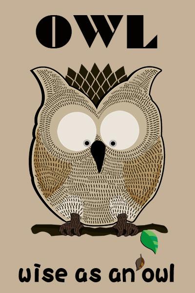 OWL600.jpg
