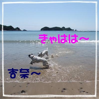 blog_06070026.jpg