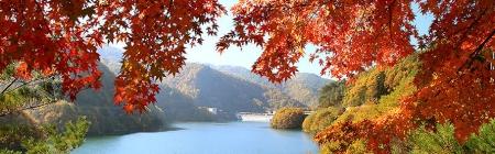 もみじ湖-箕輪ダム