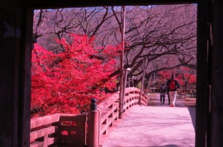 桜雲橋b_1