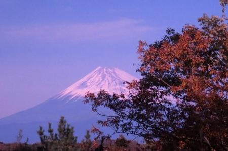 冨士見台からの富士山a_1