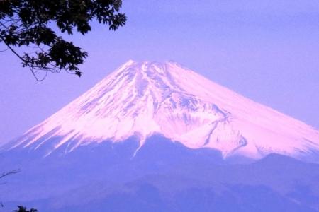 冨士見台からの富士山b_1