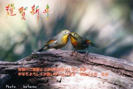 平成30年ブログ用年賀状_1