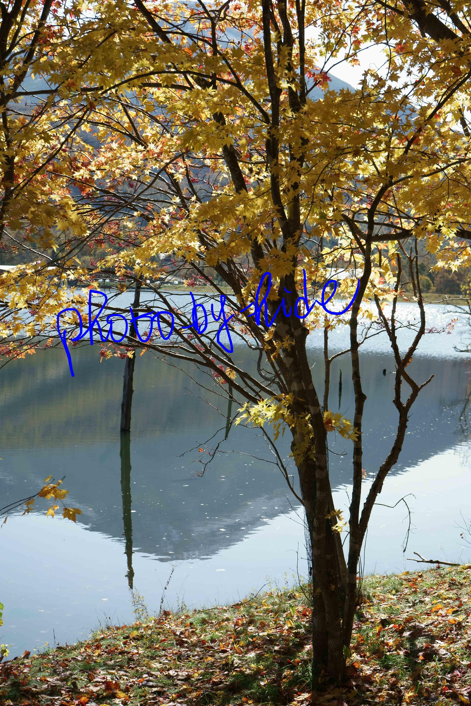 女神湖17