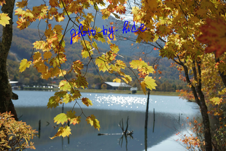 女神湖18