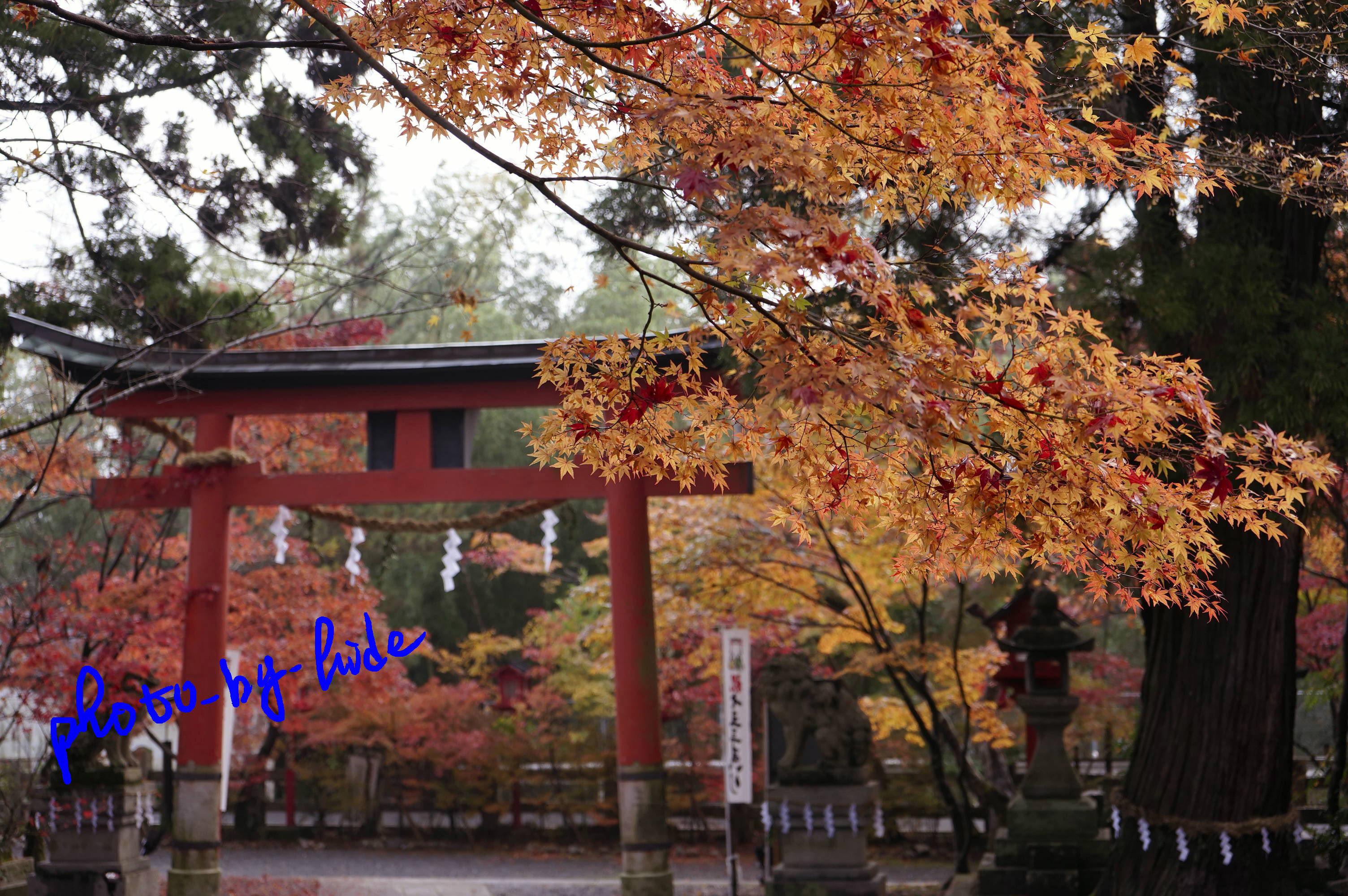 鍬山神社1