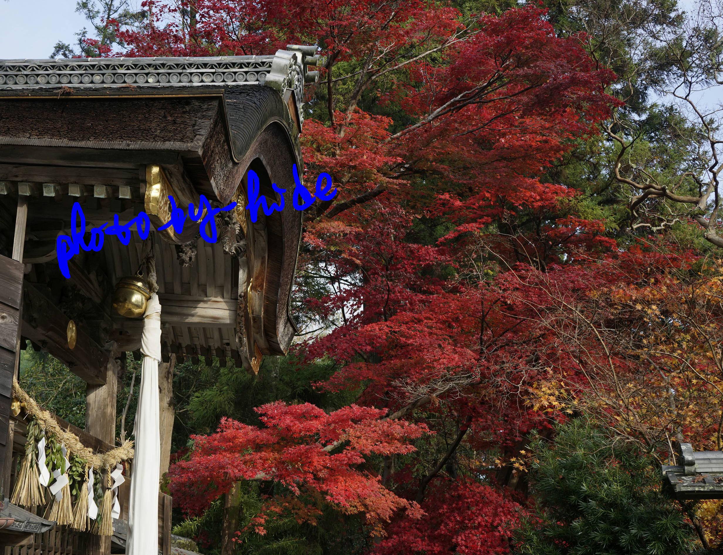 鍬山神社12