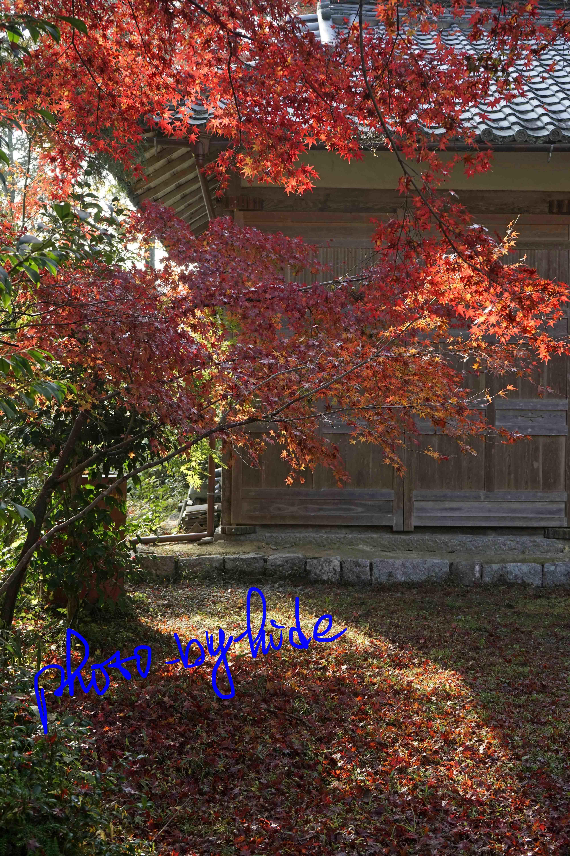 鍬山神社16