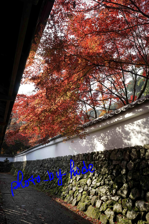 鍬山神社31