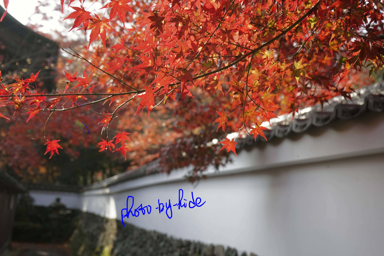 鍬山神社34