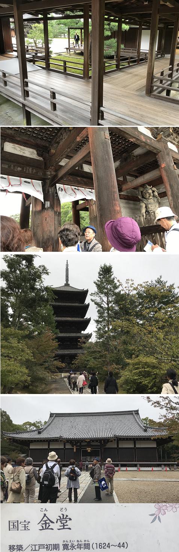 20171019 仁和寺2