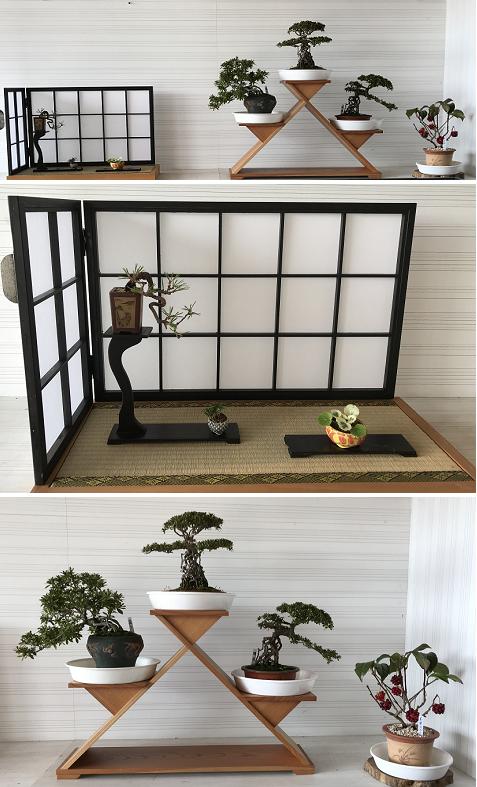 20171127 盆栽1