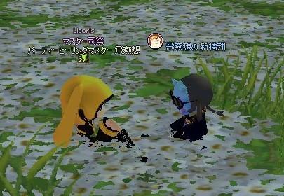 20171120_99_お花畑