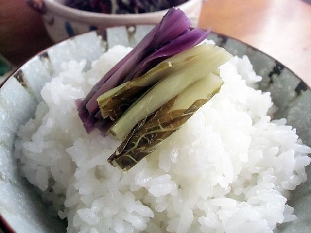 白米が美味い