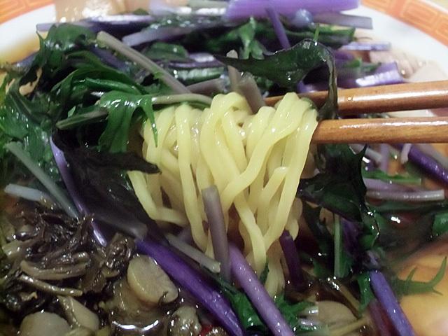 麺は菊水生中華