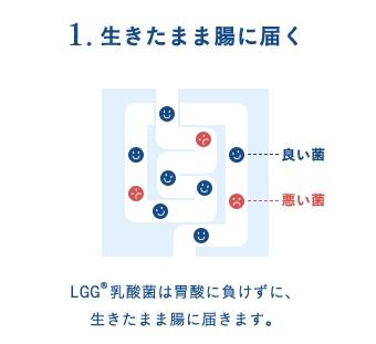 2017y11m13d_000803512.jpg
