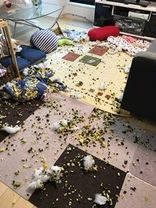 部屋荒らしました