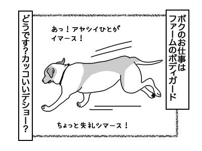 01122017_dog1mini.jpg
