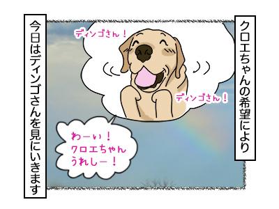02112017_dog1mini.jpg
