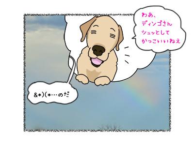 02112017_dog5mini.jpg