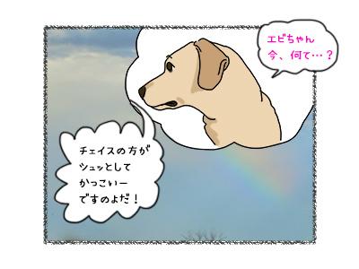 02112017_dog6mini.jpg