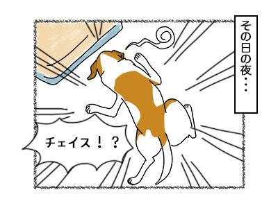 03102017_dog3mini.jpg