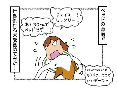 03102017_dog4mini.jpg