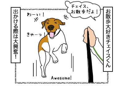 03112017_dog1mini.jpg