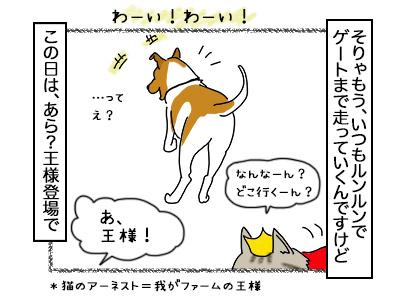 03112017_dog2mini.jpg
