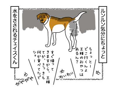 03112017_dog3mini.jpg