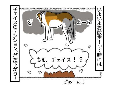03112017_dog6mini.jpg