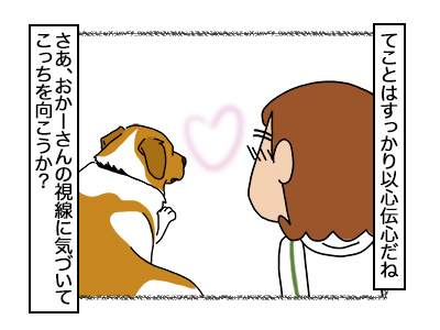 06102017_dog3mini.jpg