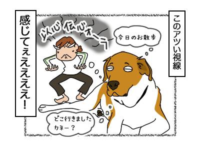 06102017_dog5mini.jpg
