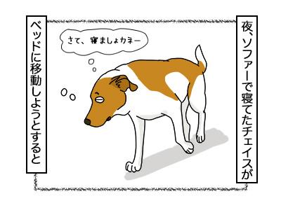07112017_dog1mini.jpg