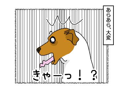 07112017_dog2mini.jpg