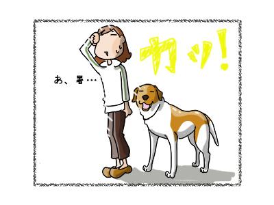 08112017_dog1mini.jpg
