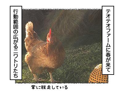 09102017_dog2mini.jpg