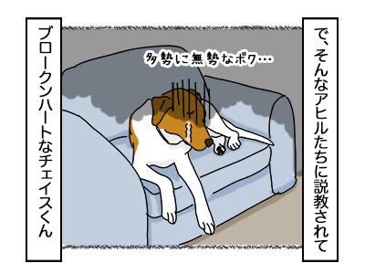 09102017_dog4mini.jpg