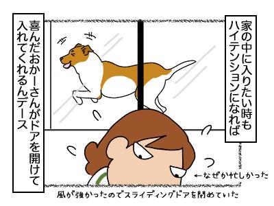 09112017_dog3mini.jpg