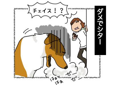 09112017_dog5mini.jpg